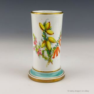 Antique English Royal Worcester Porcelain - Flower Painted Vase - Lovely