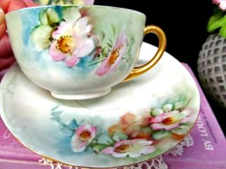 Germany Hand Painted Blossom Pink Tea Cup And Saucer German Porcelain Teacup 1