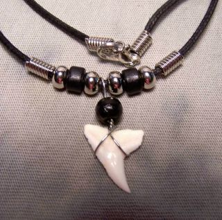 "3/4 "" Mako Shark Tooth Teeth Necklace Fossil Jaw Megalodon Fishing Real Tooth Us"