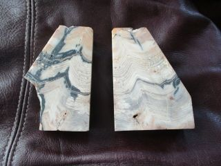 """Petrified Wood - Book Ends - 3 """" By 4 """" By 1 14 """" Thick"""